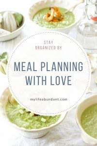 With our busy lives, the last thing we want to think about is what we are fixing for dinner. Stay organized with my meal planning ideas.