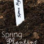 Spring Planting Time