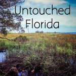 A Day in Untouched Florida in Citrus County