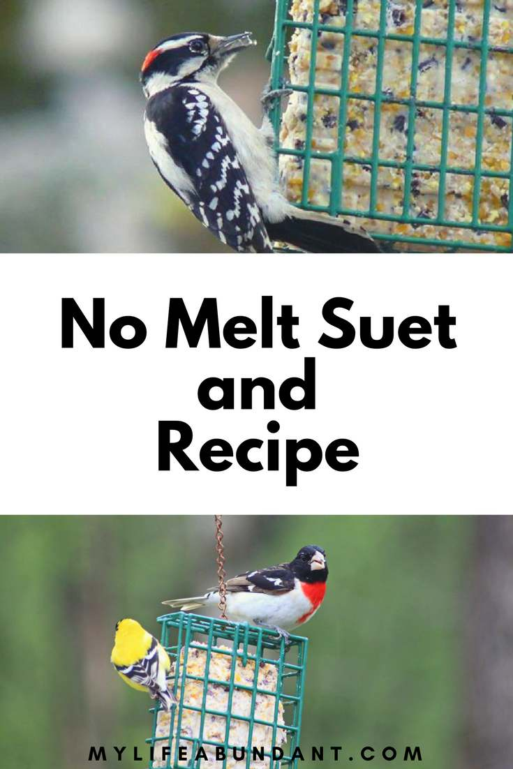 Make your own suet recipe and watch the birds flock to your feeders. It's easier than you think and also learn about No Melt Suet