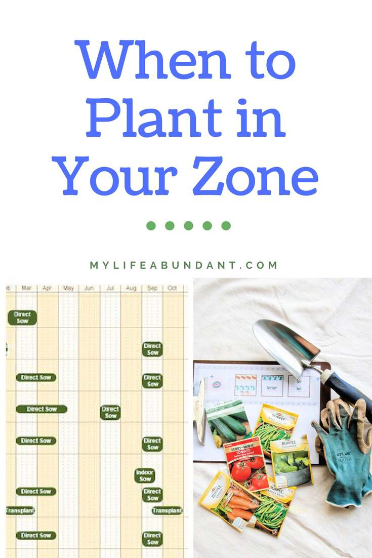 When its time to start your garden, before you begin, you must find out the Zone you live in. I will show you how to find that out.