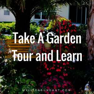 Want to learn about what grows in your area, take a local garden tour to see all the different plants, veggies and flowers that do well.