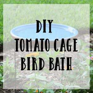 DIY Tomato Cage Bird Bath