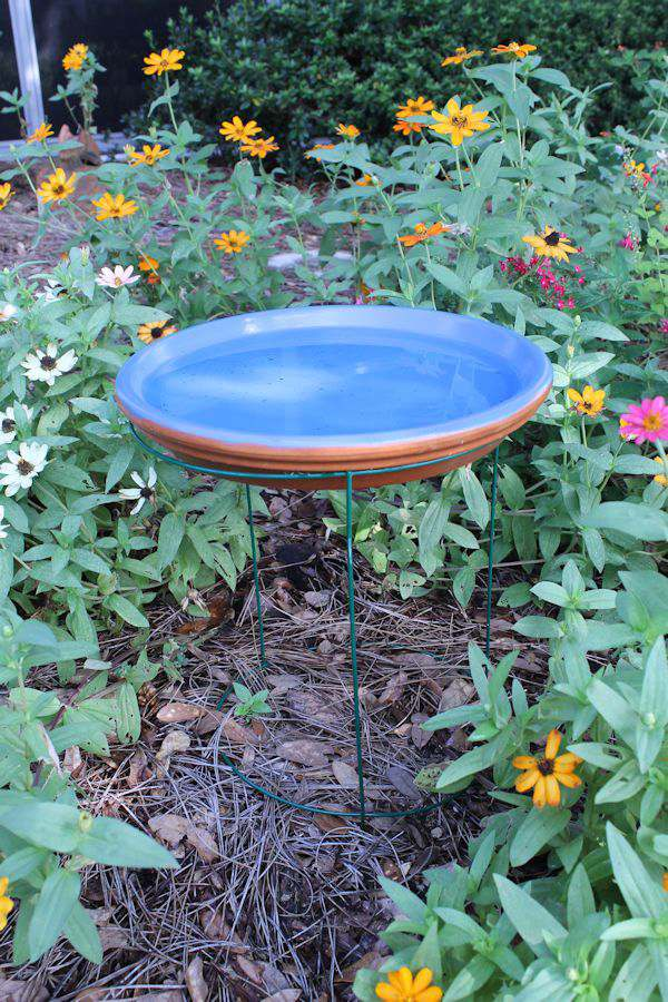 Looking for a very easy way to make a bird bath?  All you need is a few garden items and this DIY project in done in minutes