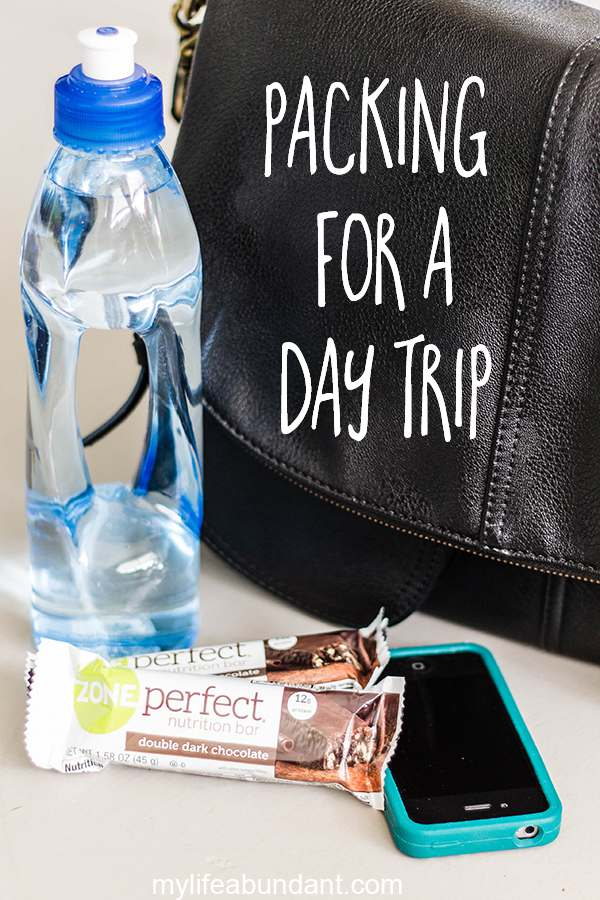 Packing Healthy Snacks for a Day Trip