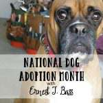 National Dog Adoption Month with Ernest T. Bass