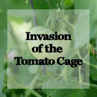 Invasion of the Tomato Cages