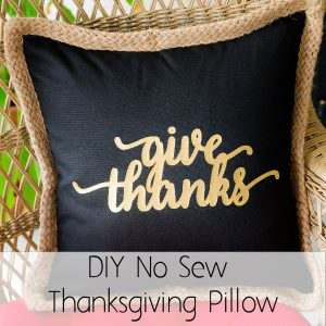 DIY No Sew Thanksgiving Pillow