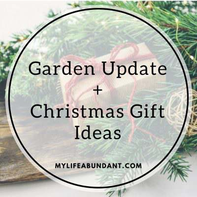 Garden Update + Christmas Gift Ideas