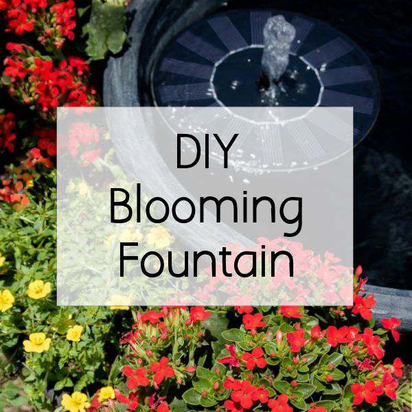 See how easy it is to make a DIY Blooming Fountain to cover up your eye sore in your yard using beautiful flowering plants by @MonroviaPlants #GrowBeautifully #ad ooh.li/5e6fda6