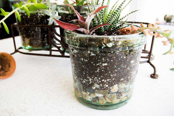 DIY Repurpose Succulent Planter