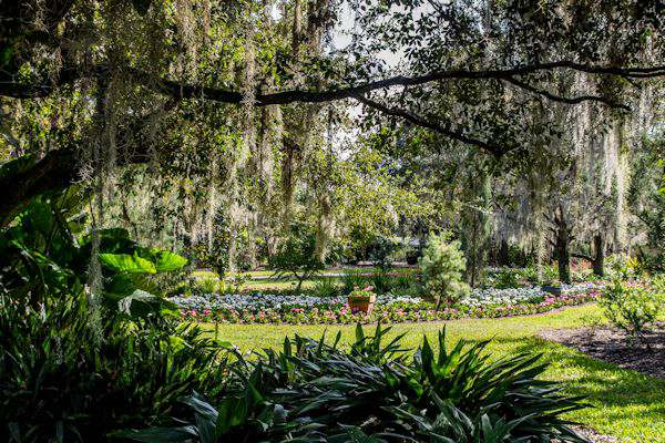 Christmas At Leu Gardens In Orlando