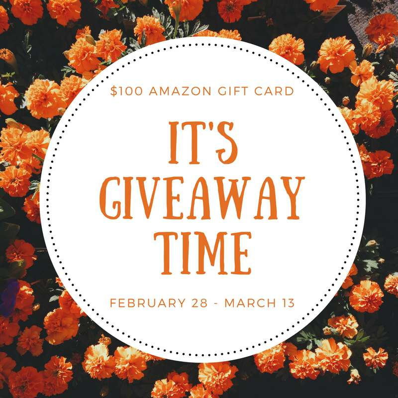 It's time for another $100 Amazon gift card giveaway. The giveaway will run from February 28 to March 13th.
