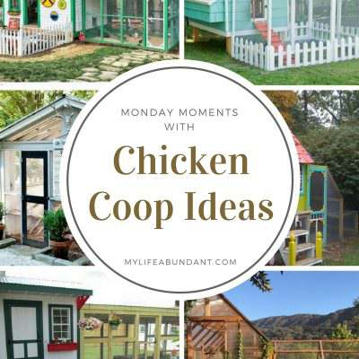 Monday Moments with Chicken Coop Ideas
