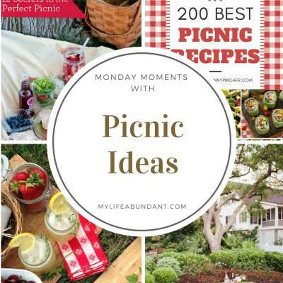 Monday Moments with Picnic Ideas