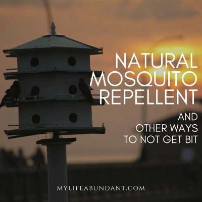 Natural Mosquito Repellent & Other Ways to Not Get Bit
