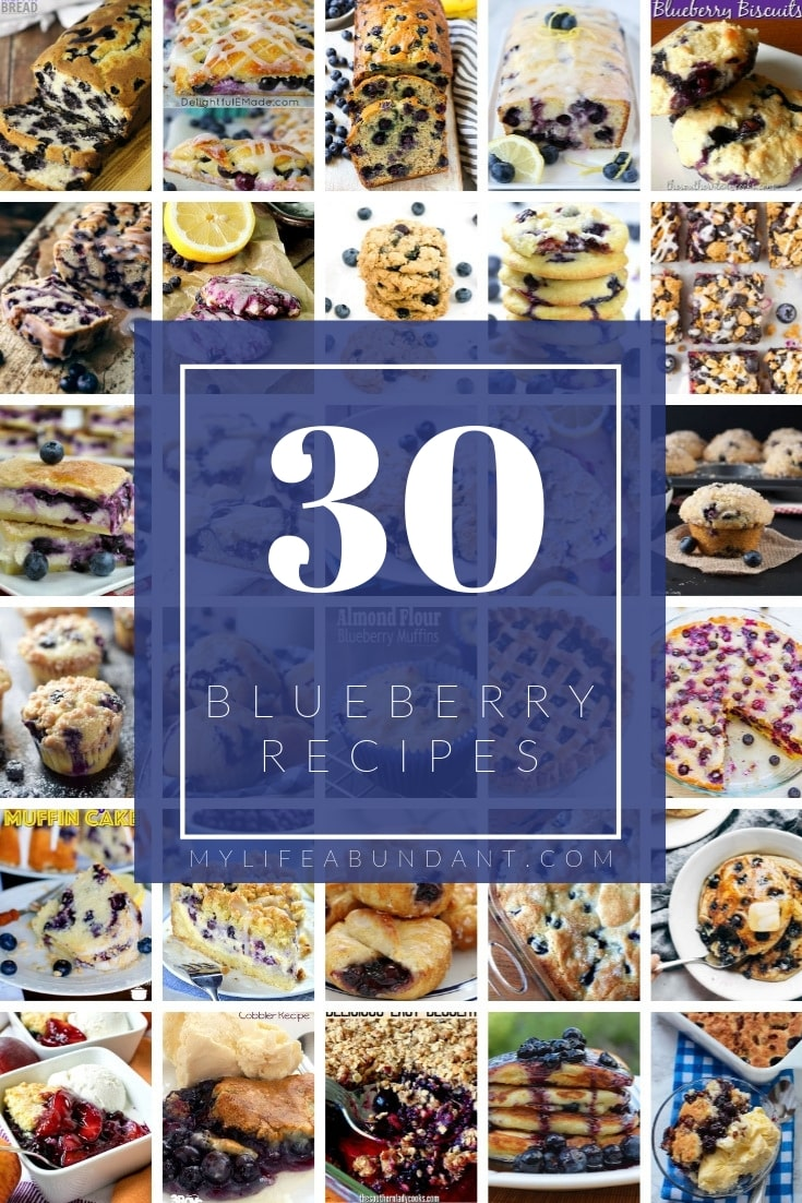 A round-up of a collection of some yummy delicious blueberry recipes I know you will find one you love!
