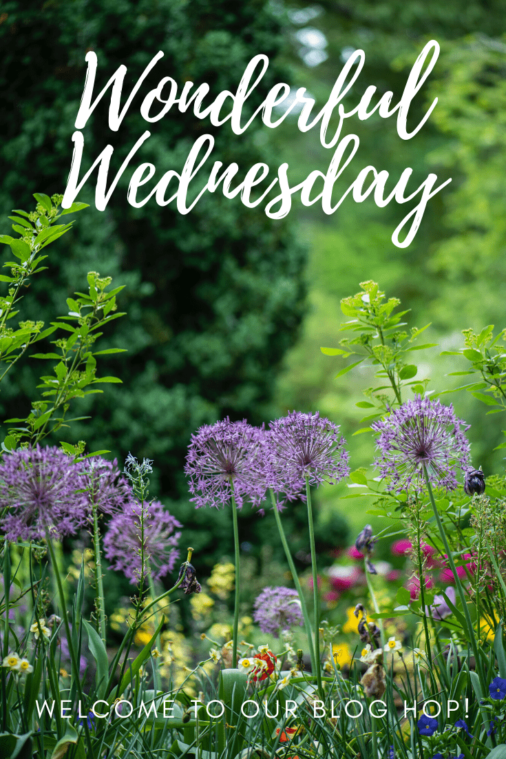 Wonderful Wednesday Blog Hop. Share NOW. #wwbh #WWBH #WWBloghop #eclecticredbarn