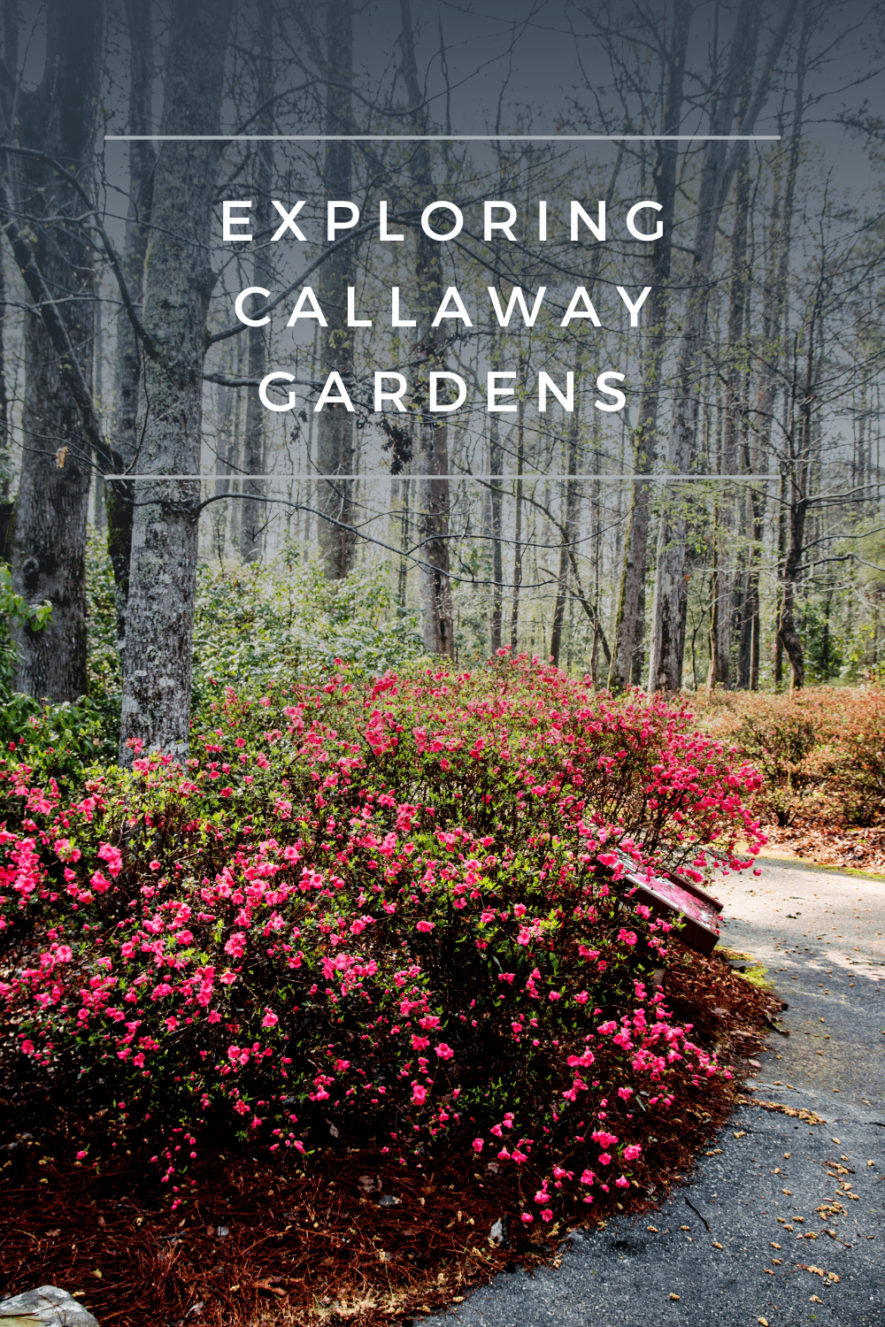 Callaway Gardens is more than just beautiful gardens and a perfect place for families to enjoy all year long.