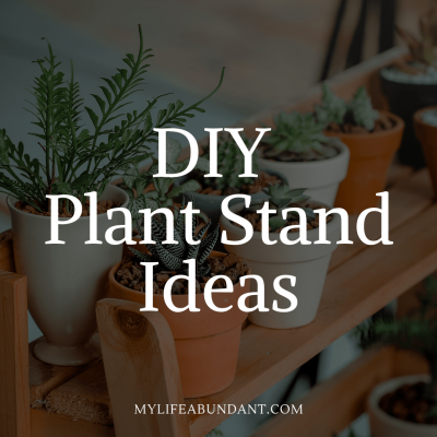 Enjoy thrifty DIY plant stands that will display your favorite plants and look great in your home.