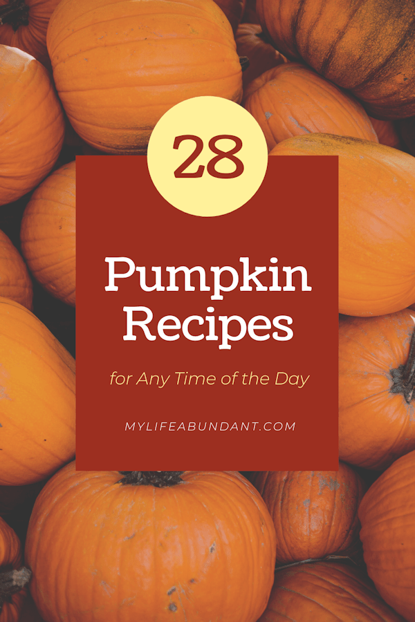 All of the best pumpkin recipes for any time of the day or night. Everything from breakfast, dinner, dessert, drinks, dips, and breads.